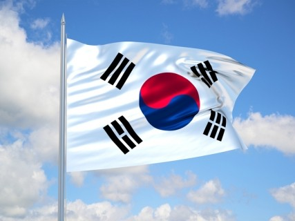 South Korea: Economic and Social Consequences of Globalization
